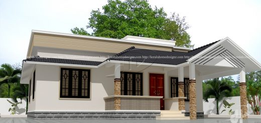 862 sq ft single floor home design - Single Home Designs