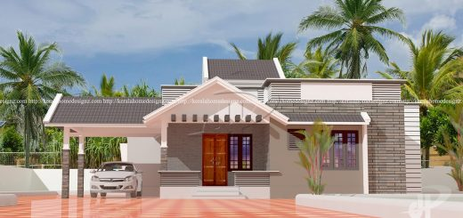 One Floor Mixed Roof Home Design