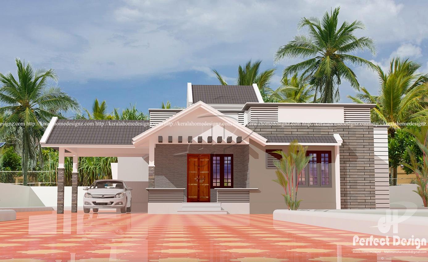 One Floor Mixed Roof Home Design